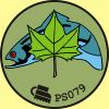 PS079 Ryba pod platanem